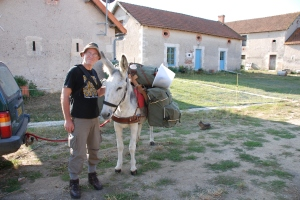 Dalie with packsaddle and ready to go: Antigny 2010
