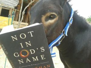 """Not in God's Name"" by Rabbi Jonathan Sacks"