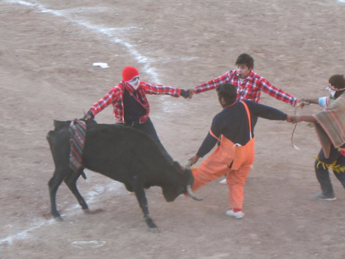 clown bullfight